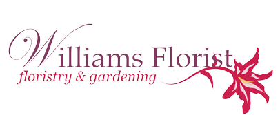 Williams Florist in Stalbridge